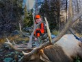 colorado big game hunting 01