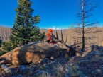 colorado big game hunting 09