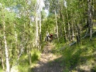 horseback riding creede colorado 03