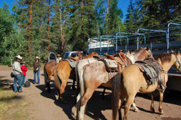 wilderness pack trip camp horse 02