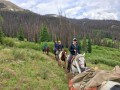 wilderness pack trip camp horse 04